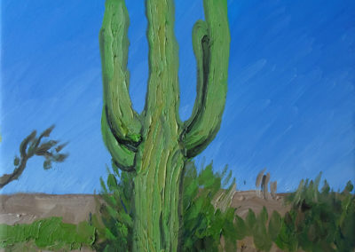 Arizona, USA Öl auf Leinwand, 60 x 80 cm, 2019